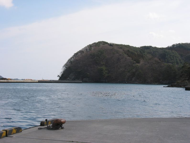 buro11harutsunami2.jpg